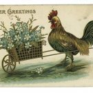 EASTER CHICKEN PUSHING WHEELBARROW OF FLOWERS POSTCARD