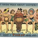 COMIC RISQUE PICK UP WOMEN IN  SWIMSUITS  POSTCARD