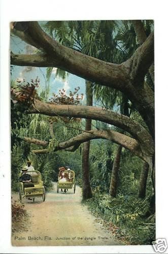 PALM BEACH FL FLORIDA JUNGLE TRAIL CART RIDE POSTCARD
