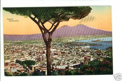 NAPOLI ITALY PANORAMA OF CITY  POSTCARD