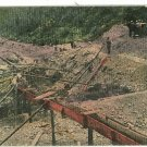 GOLD MINING IN AUSTRALIA GOLD MINE HORSE  POSTCARD