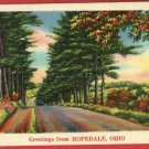 HOPEDALE OHIO OH GREETINGS FROM 1939  POSTCARD