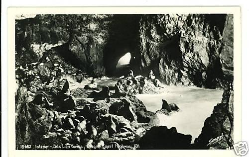 RPPC SEA LION CAVES OREGON COAST HIGHWAY SAWYERS  RPPC