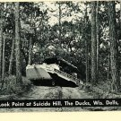 WISCONSIN DELLS WI   DUCKS SUICIDE HILL POSTCARD
