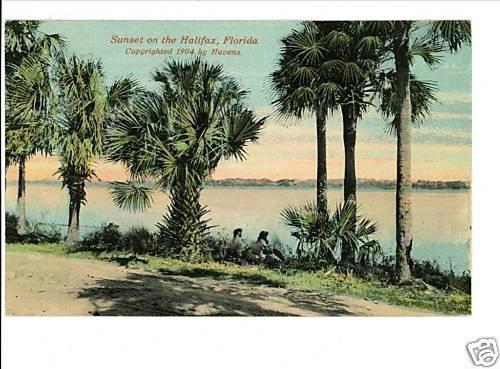 HALIFAX FL FLORIDA  1904 POSTCARD HAVENS