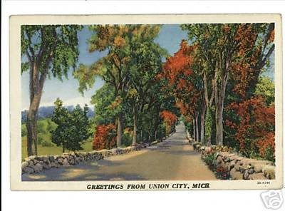 UNION CITY MICHIGAN GREETINGS FROM 1935 POSTCARD