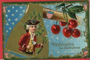PRESIDENT WASHINGTON AXE CHERRIES E NASH 1909 POSTCARD