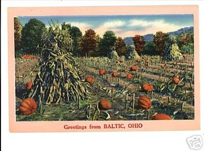 BALTIC OHIO GREETINGS FROM CORN PUMPKINS VINTAGE PSTCRD