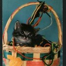 KITTEN CAT IN BASKET WITH YARN  POSTCARD