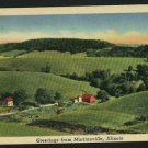 MARTINSVILLE IL ILLINOIS GREETINGS FROM 1954 POSTCARD