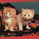 2 CATS KITTENS ON CROCHETED AFGHAN KITTEN  POSTCARD
