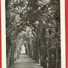 QUEEN MARY BOWER  HAMPTON COURT PALACE ENGLAND POSTCARD