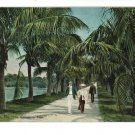 PALM BEACH FL FLORIDA ROCKEFELLER TRAIL POSTCARD