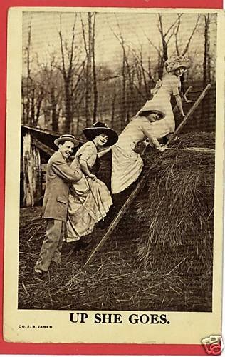 WOMEN UP LADDER ON STRAW UP SHE GOES   POSTCARD