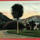 SANTA CATALINA CALIFORNIA CA DESCANSO CANYON POSTCARD