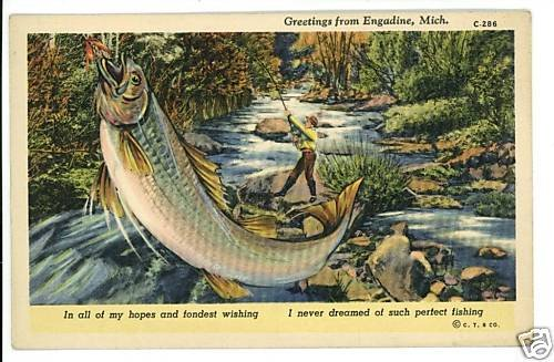 ENGADINE MI MICHIGAN BIG FISH EXAGGERATION  POSTCARD
