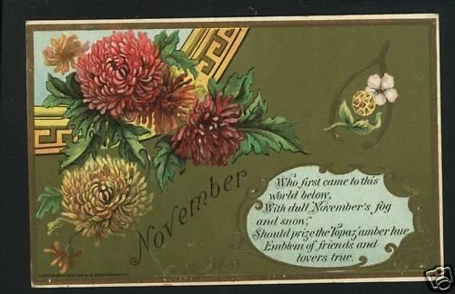 NOVEMBER BIRTH BIRTHDAY TOPAZ 1908  POSTCARD