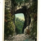 NATURAL BRIDGE VIRGINIA VA  DETROIT PUBLISHING POSTCARD