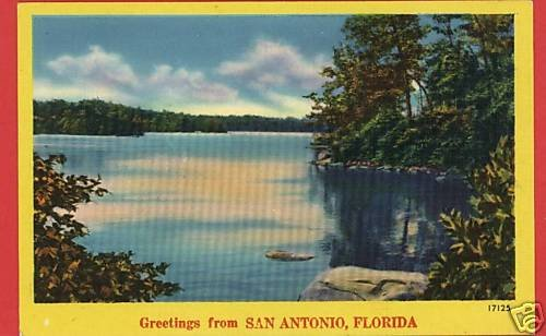 SAN ANTONIO FLORIDA FL GREETINGS FROM POSTCARD