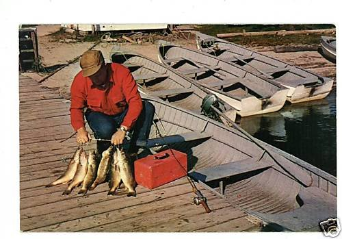 WALLEYE PIKE FISH FISHERMAN BOAT POLE POSTCARD