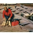 WALLEYE PIKE FISH FISHERMAN BOAT POLE POSTCARD