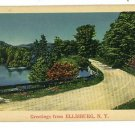 ELLISBURG NEW YORK GREETINGS FROM POSTCARD 1940