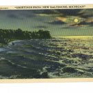 NEW BALTIMORE MICHIGAN GREETINGS FROM POSTCARD