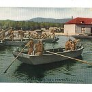 US ARMY ENGINEERS BUILDING  PONTOON BRIDGE WWI POSTCARD