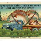 MT GILEAD OH OHIO GREETINGS EXAGGERATION FISH POSTCARD