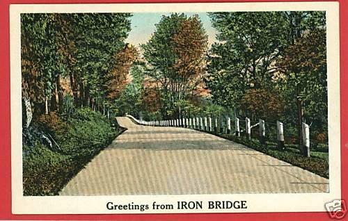 IRON BRIDGE GREETINGS FROM MICHIGAN POSTCARD