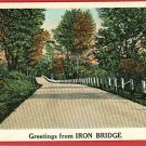 IRON BRIDGE GREETINGS FROM MICHIGAN POSTCARD