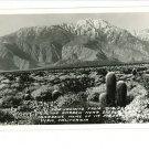 RPPC INDIO CA MT SAN JACINTO FROM CACTUS GARDEN