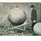 BLAKE OHIO EXAGGERATION ONIONS WHEELBARROW 1915 POSTCRD