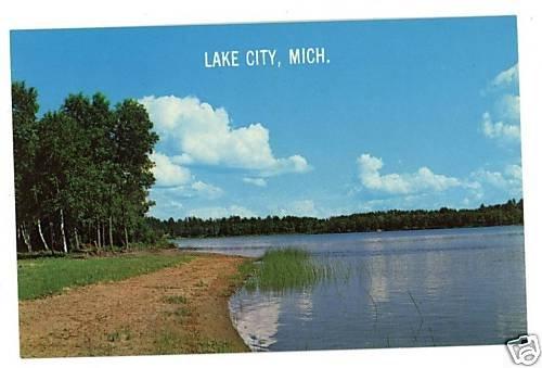 LAKE CITY MICHIGAN  SANDY BEACH WHITE BIRCHES  POSTCARD