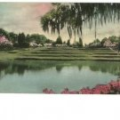 Charleston SC Middleton Place - Hand-Colored Postcard