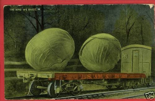 EXAGGERATION CABBAGES LS & MS RR TRAIN CAR POSTCARD