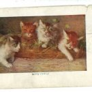 CATS KITTENS IN BASKET HAPPY FAMILY 1907  POSTCARD