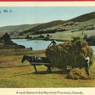 HAYMAKING MARITIME PROVINCES CANADA HORSE CART POSTCARD