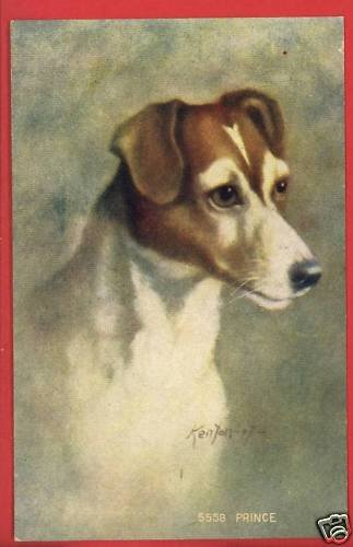 DOG  PRINCE  KENYON 07 1907  ARTIST SIGNED POSTCARD