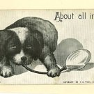 DOG PUPPY ARTIST SIGNED FLC 1909 MOSS POSTCARD
