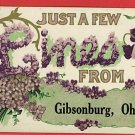 GIBSONBURG OHIO  OH FEW LINES FROM   1910  POSTCARD