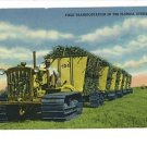FLORIDA EVERGLADES FIELD TRANSPORTATION VINTAGE POSTCRD