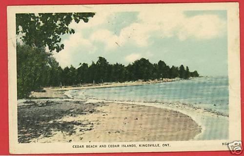 KINGSVILLE ONTARIO CANADA CEDAR BEACH ISLANDS  POSTCARD