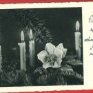 EIN FROHES FEST HAPPY HOLIDAYS GERMAN GUNKEL  POSTCARD