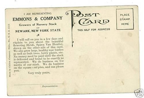 NEWARK NEW YORK EMMON & CO NURSERY ADVERTISING POSTCARD
