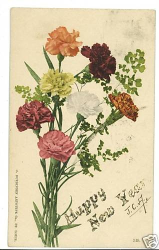PRIVATE MAILING CARD HAPPY NEW YEAR CARNATIONS POSTCARD