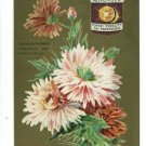 NOVEMBER BIRTHDAY TOPAZ CHRYSANTHEMUM FIDELITY POSTCARD