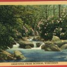 MONROE WI WISCONSIN GREETINGS FROM STREAM  POSTCARD