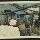 COTTON PICKING BLACK MEN ON WAGONS 1951 POSTCARD