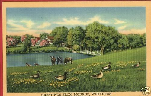 MONROE WI WISCONSIN GREETINGS FROM COWS GEESE  POSTCARD